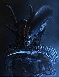 alien_vs-_predator_28200429_-_alien